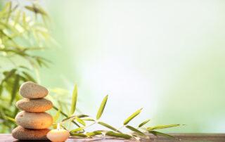 Massage and Chiropractor